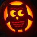 cute-owl-Pumpkin , 10 Cute Pumpkin Carving Patterns Ideas In Furniture Category
