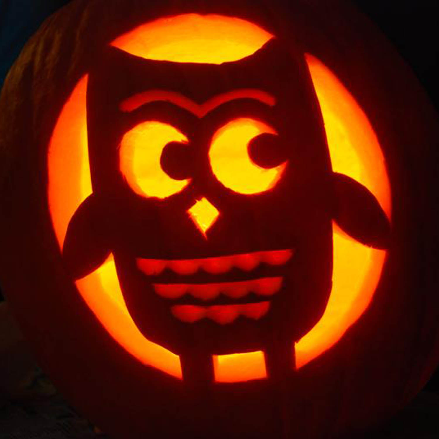 Cute owl pumpkin carving patterns ideas