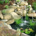 water-backyard-landscaping-ideas , 11 Cool Landscaping Ideas For Small Backyards In Apartment Category