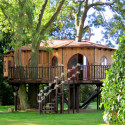 Blue Forest Tree Houses , 7 Excellent Livable Tree Houses In Homes Category