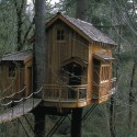 Tree house living , 7 Excellent Livable Tree Houses In Homes Category