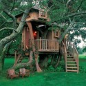 house plan , 7 Excellent Livable Tree Houses In Homes Category