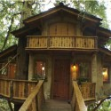 wood house design , 7 Excellent Livable Tree Houses In Homes Category