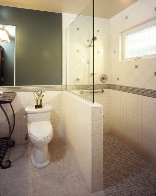 Walk in shower designs plans 6 fabulous walk in doorless for Small bathroom designs with walk in shower