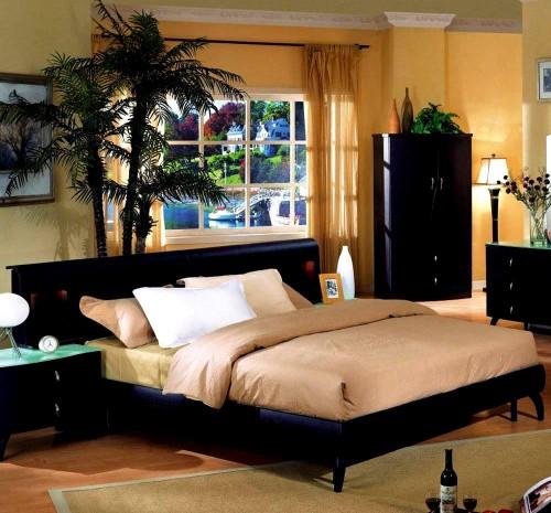 Bedroom , 8 Cool Young Man Bedroom Ideas : man tropical bedroom design