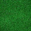 Amenity artificial grass , 7 Fabulous Astro Turf Rug In Others Category