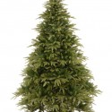 Artificial Christmas Trees , 5 Beautiful 9ft Christmas Tree In Others Category