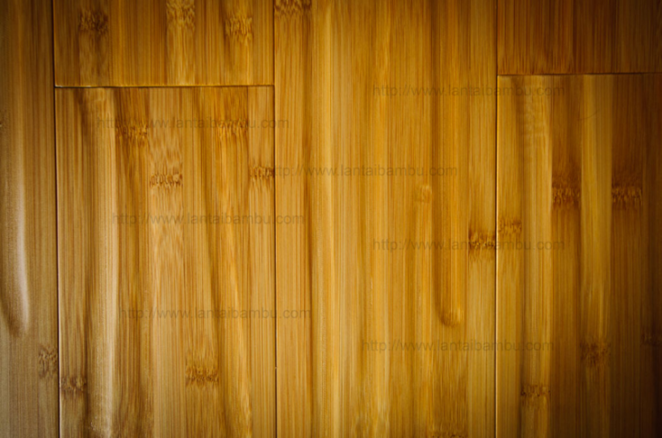 Others , 6 Fabulous Bamboo Flooring Pros And Cons : Bamboo flooring