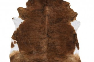 500x500px 7 Top Cowhide Rug Picture in Others