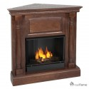 Free Gas Fireplace Inserts , 5 Charming Ventless Fireplace Insert In Others Category