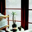 Rice Paper window film , 8 Unique Artscape Window Film In Homes Category