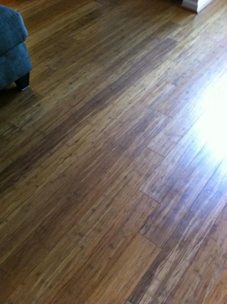 Others , 7 Nice Pergo XP Flooring :  bamboo flooring