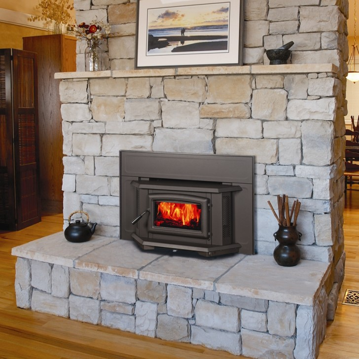 Others , 5 Charming Ventless Fireplace Insert :  electric fireplace
