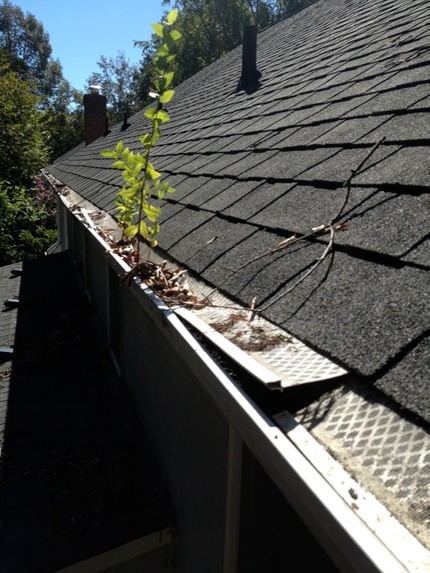 Gutter Guard That Failed 7 Popular Home Depot Gutter Guards