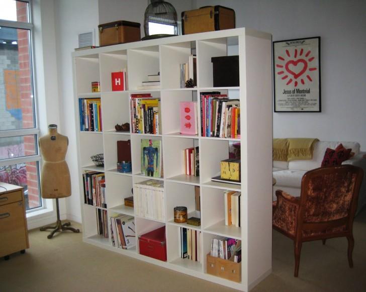 Furniture , 7 Hottest Bookcase Room Dividers : Bookshelf Room Divider Sample Designs