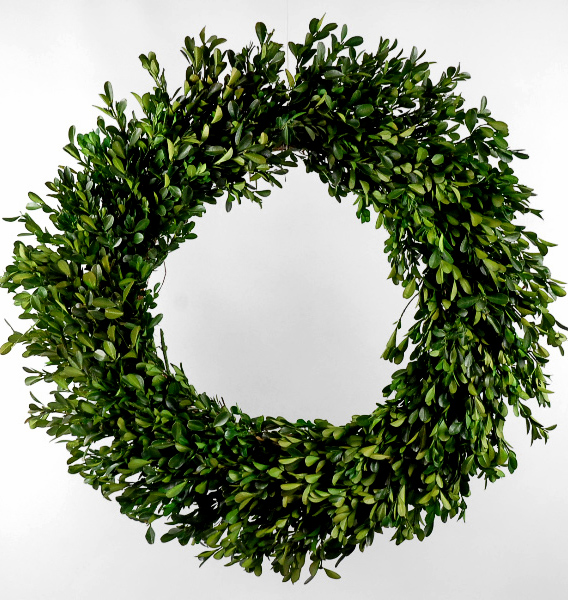 Others , 7 Nice Boxwood Wreath : Boxwood Wreath 22in