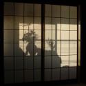 glass sliding doors , 8 Popular Shoji Doors In Others Category