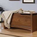 Furniture , 6 Superb Entryway Chest :  shoe rack bench
