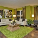 Green Wall paint for Living Room , 11 Lovely Idea For Painting Walls In Interior Design Category
