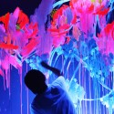 Que Houxo , 8 Good Neon Wall Paint In Interior Design Category