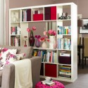 Room Divider Ideas , 8 Unique Bookcase Room Dividers Ideas In Furniture Category