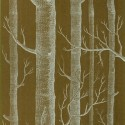 Son Woods wallpaper , 9 Top Cole And Son Wallpaper Woods In Interior Design Category