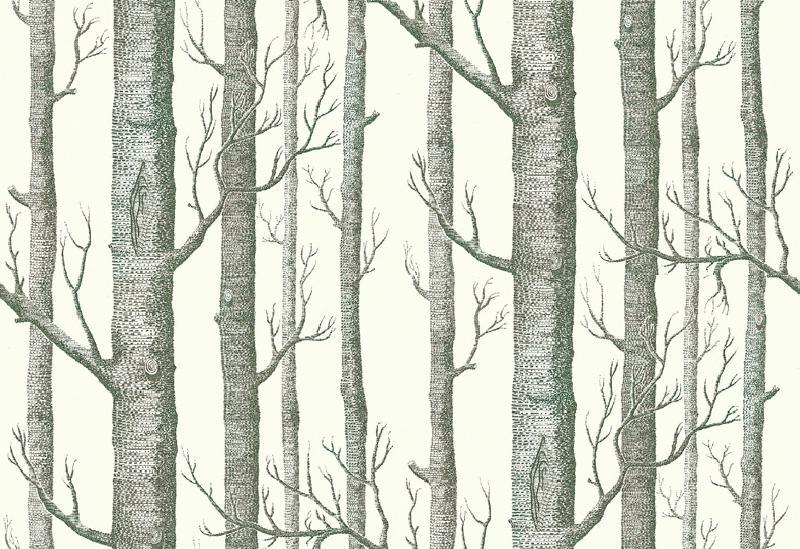 800x549px 9 Top Cole And Son Wallpaper Woods Picture in Interior Design