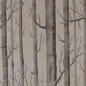 Woods Foil , 9 Top Cole And Son Wallpaper Woods In Interior Design Category