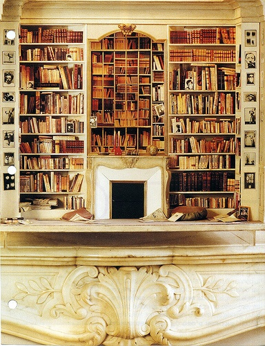 384x500px 8 Amazing Beautiful Bookshelves Picture in Furniture