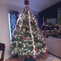 christmas tree , 8 Charming Stylish Christmas Trees In Others Category