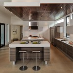 Awesome  Contemporary Kitchen Cabinets Options Picture , Gorgeous  Transitional Kitchen Cabinets Options Image Ideas In Kitchen Category