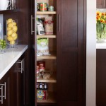 Awesome  Contemporary Small Kitchen Pantry Image Inspiration , Stunning  Traditional Small Kitchen Pantry Image Ideas In Kitchen Category