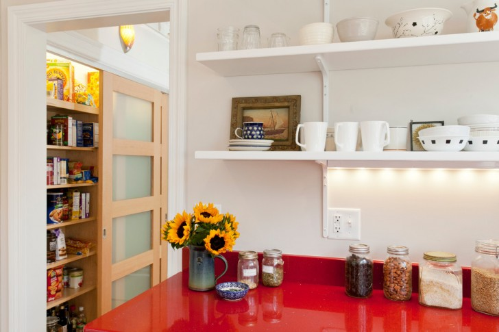 Kitchen , Cool  Traditional Pantry Cabinets For Kitchen Picture Ideas : Awesome  Scandinavian Pantry Cabinets For Kitchen Picture