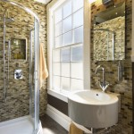 Beautiful  Contemporary Corner Showers for Small Bathrooms Picture Ideas , Stunning  Transitional Corner Showers For Small Bathrooms Picture Ideas In Bathroom Category