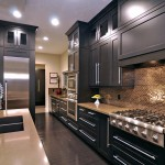 Beautiful  Contemporary Kitchen Cabinets Houzz Photos , Stunning  Traditional Kitchen Cabinets Houzz Image In Kitchen Category