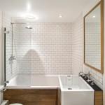 Beautiful  Contemporary Small Flies in Bathroom Image , Cool  Midcentury Small Flies In Bathroom Picute In Bathroom Category