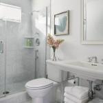 Breathtaking  Beach Style Modern Pedestal Sinks for Small Bathrooms Photos , Cool  Farmhouse Modern Pedestal Sinks For Small Bathrooms Image Inspiration In Bathroom Category