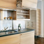 Breathtaking  Contemporary How to Kitchen Cabinets Photos , Awesome  Traditional How To Kitchen Cabinets Picture In Kitchen Category