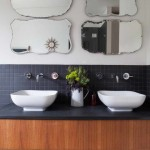 Breathtaking  Midcentury Small Black Flies in Bathroom Picute , Cool  Transitional Small Black Flies In Bathroom Photo Ideas In Bathroom Category