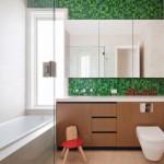 Charming  Contemporary Small Flies in Bathroom Ideas , Cool  Midcentury Small Flies In Bathroom Picute In Bathroom Category