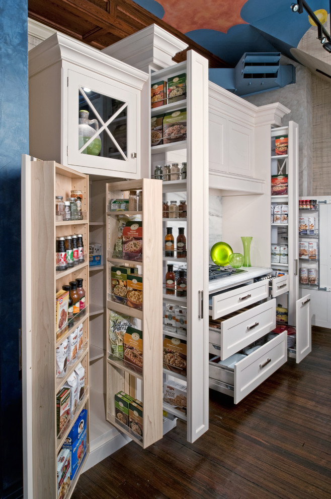 Kitchen , Cool  Traditional Pantry Cabinets For Kitchen Picture Ideas : Charming  Traditional Pantry Cabinets for Kitchen Photos