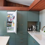 Fabulous  Midcentury Cabinet Designs for Kitchens Photos , Cool  Traditional Cabinet Designs For Kitchens Photo Inspirations In Kitchen Category