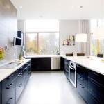 Gorgeous  Contemporary Cabinets for the Kitchen Image Inspiration , Awesome  Contemporary Cabinets For The Kitchen Inspiration In Kitchen Category