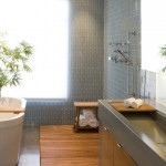 Gorgeous  Contemporary Doorless Shower Designs for Small Bathrooms Image Inspiration , Awesome  Modern Doorless Shower Designs For Small Bathrooms Ideas In Bathroom Category
