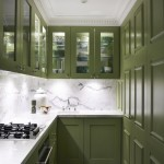 Gorgeous  Contemporary Kitchen Door Cabinets Picture , Lovely  Contemporary Kitchen Door Cabinets Image In Kitchen Category