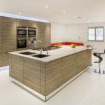 Gorgeous  Contemporary Kitchen Wooden Cabinets Photo Inspirations , Wonderful  Contemporary Kitchen Wooden Cabinets Picture In Kitchen Category