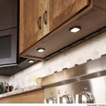 Gorgeous  Traditional Kitchen Cabinet Outlets Ideas , Lovely  Contemporary Kitchen Cabinet Outlets Picture Ideas In Kitchen Category