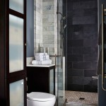 Gorgeous  Transitional Glass Showers for Small Bathrooms Ideas , Gorgeous  Contemporary Glass Showers For Small Bathrooms Picute In Bathroom Category