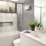 Lovely  Contemporary Glass Showers for Small Bathrooms Picute , Gorgeous  Contemporary Glass Showers For Small Bathrooms Picute In Bathroom Category
