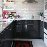 Lovely  Midcentury Kitchen in a Cabinet Picture , Beautiful  Transitional Kitchen In A Cabinet Photos In Kitchen Category